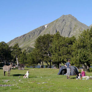 Camping Montagne Blog Tente
